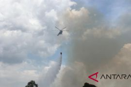 Lahan terbakar di Banjarbaru 511 hektare