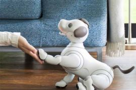 Robot anjing aibo punya memori dan kenali 100 wajah manusia
