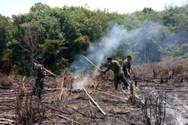 Seven hectares of Meratus land burned