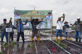 HST dapat jatah lahan seluas Empat Hektar di Jejangkit