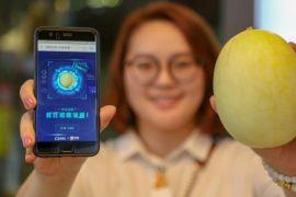 Toko buah di China punya pendeteksi kemanisan melon