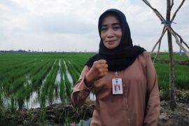 Disnak kembangkan itik Alabio di kawasan HPS