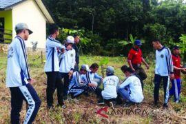 Tujuh Sekolah Di Tabalong Masuk Adiwiyata Provinsi