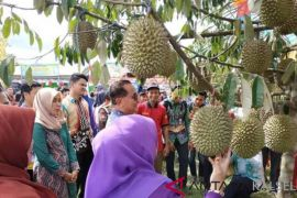 Hari jadi Telaga Langsat suguhkan kuliner serba Durian