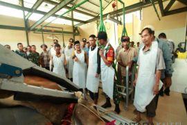Kabupaten Barito Kuala  miliki rumah potong hewan