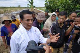 Kementan proyeksikan Kalsel lumbung pangan luar Jawa