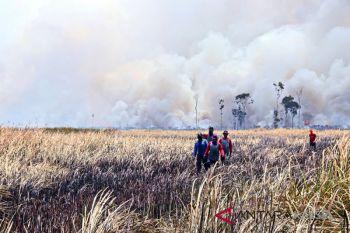 Kebakaran di Areal Lahan HPS di Jejangkit