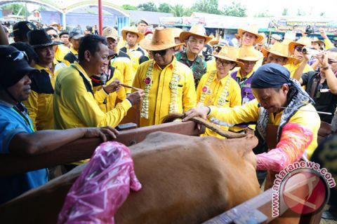 Kalsel bertekad menjadi sentra peternakan nasional