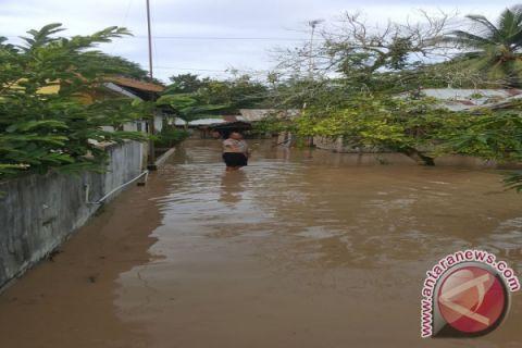 Dua Kecamatan di Tapin Terendam Banjir