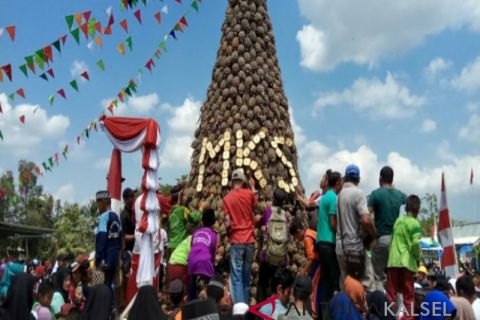 Barito Kuala holds first pineapple festival