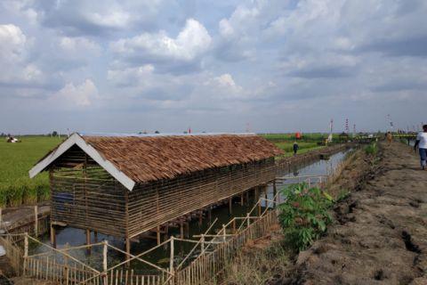Livestock Agency develops Alabio ducks in World Food Day area