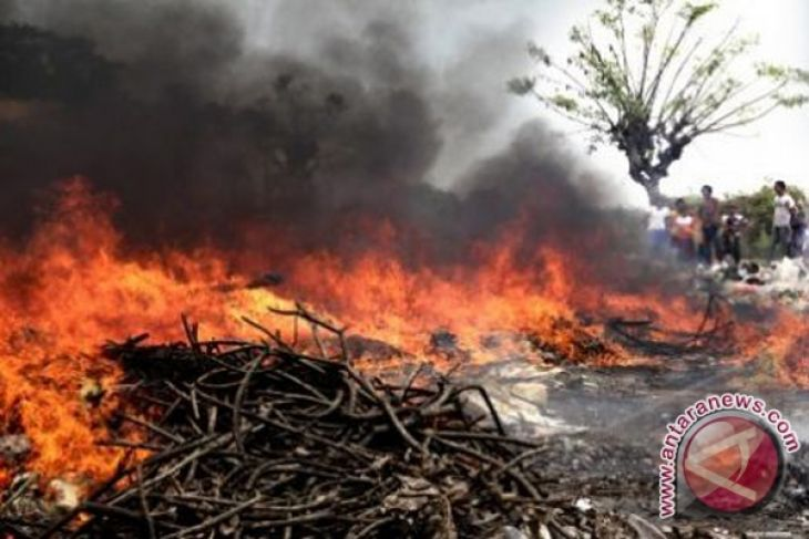 Deputy BMKG: Be alert of forest and land fires