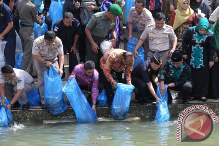 Mayor releases tens thousand papuyu fish seeds