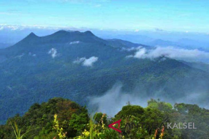 Tiga Taman Nasional Indonesia masuk daftar biosfer dunia, bagaimana dengan Meratus?