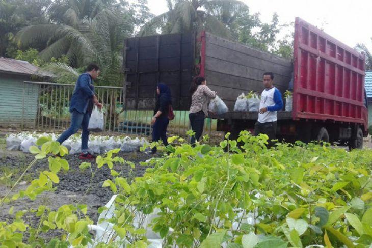 KPH Tabalong menyalurkan 10 ribu bibit tanaman