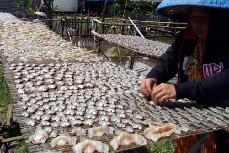 Nelayan berharap bantuan sistem penjualan ikan