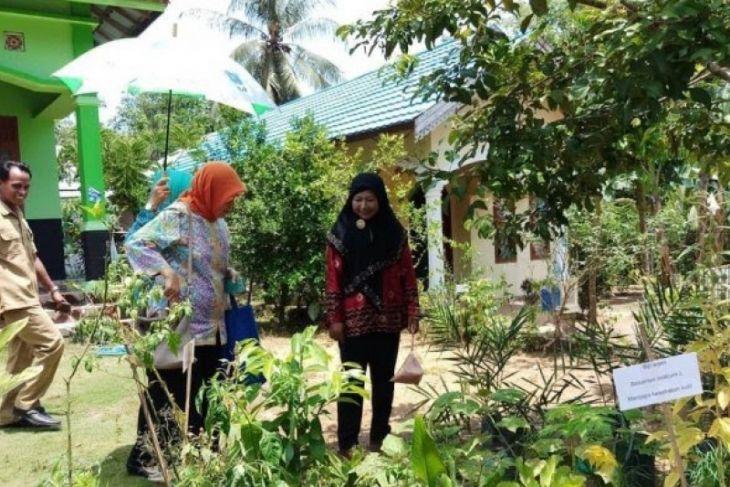 Tabalong nomine nasional tanaman obat desa terpencil