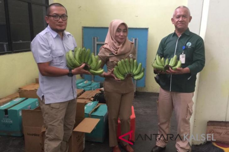 Astra Group kirim ribuan pisang Cavendish ke HPS pecahkan rekor MURI