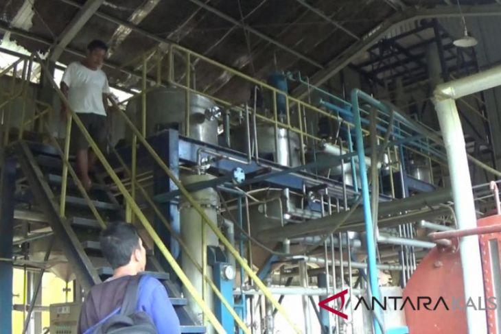 Kotabaru gandeng koperasi operasikan pabrik biodiesel