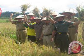 Dinas Pertanian Berau Mulai Jalankan