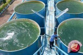 800 sambungan air bersih MBR Penajam diverifikasiI