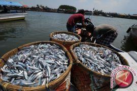 Harga Ikan Laut di Penajam Semakin Mahal