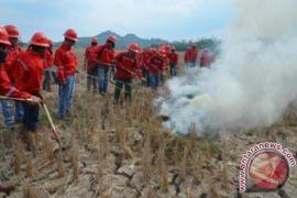 Disbun Kaltim bangun kemitraan petani peduli api
