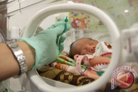 Bayi Tabung Kembar Empat Lahir Sehat