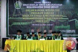 Stiper Muhammadiyah Paser Wisuda 60 Sarjana
