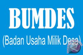 Batu Majang pastikan bentuk BUMDes