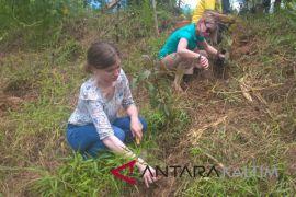 GMSS-SKM berhasil bibitkan 15 spesies tanaman langka