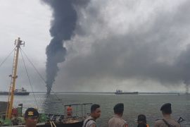 Aktivis bentuk koalisi lawan pencemar lingkungan Teluk Balikpapan