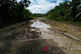 Perbaikan jalan Bukit Subur Penajam dialokasikan Rp3,5 miliar