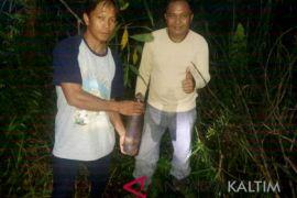 Warga Penajam temukan mortir bekas perang