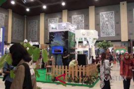 Petani Kaltim pamerkan padi dalam forestry expo