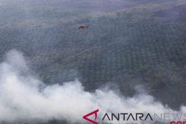 BMKG: potensi kebakaran lahan di Penajam tinggi