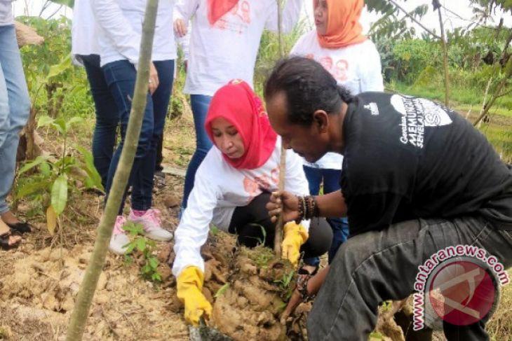 Pemerhati sungai Samarinda berburu bibit pohon khas