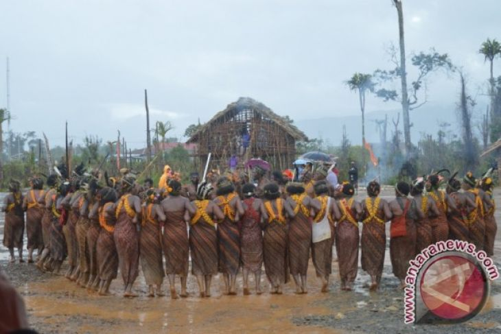 Tari Tumbuk Tanah dari beberapa Subsuku Arfak memeriahkan Festival Arfak, Sabtu 12 November 2016