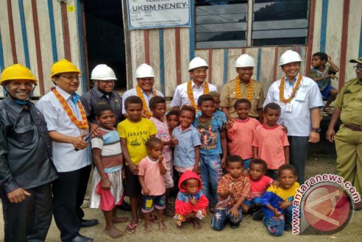 101 desa baru di Papua-Papua Barat teraliri listrik