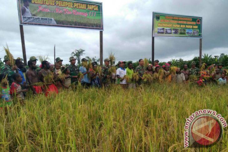 Demitrius Moktis Sang Pelapor Petani Padi Masyarakat Arfak