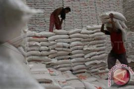 Bulog Sumut serap 6.800 ton beras petani