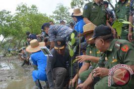 Hutan mangrove pengawasan Stabat 69.907,89 hektare