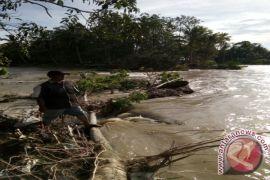 Ratusan Hektare Sawah Terancam Puso