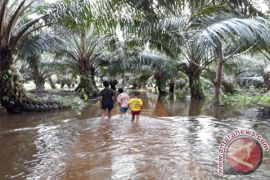 Sungai Garoga Meluap Rendam Pemukiman Warga