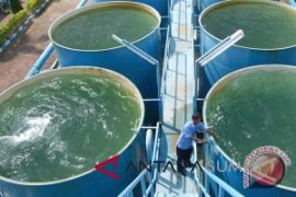 Ratusan warga sudah nikmati air bersih