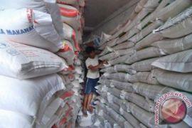 10.000 ton beras India sudah masuk Belawan
