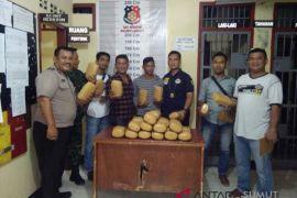 Polisi amankan pembawa 31 kilogram ganja