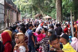 Kunjungan Taman Hewan  Pematangsiantar 38.794 orang