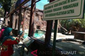 Demi kenyamanan pengunjung, Taman Hewan Pematang Sianta  benahi fasilitas