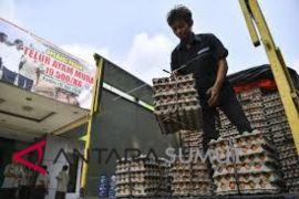 Sumut segera operasi pasar telur